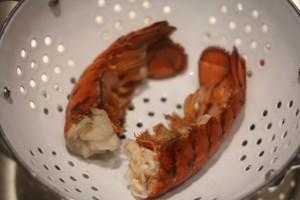 Remove the lobster tails from heat.  Drain the water, and allow the tails to cool.