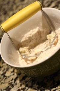 Using a pastry blender or 2 forks, cut the butter into the mixture.